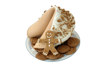 Celebrity Friends Receive Fancy Fortune Cookies from Jennifer Love Hewitt for Christmas