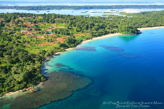 Red Frog Beach Rainforest Resort and Marina comes to life in Bocas del Toro Panama